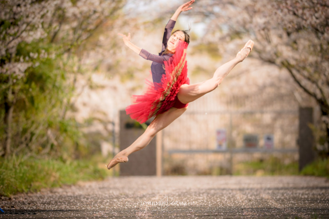 photo 51 Cherry blossom and ballet